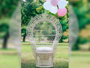 Bridal/BabyShower Chair