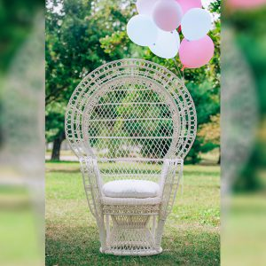 Baby-Shower-Chair